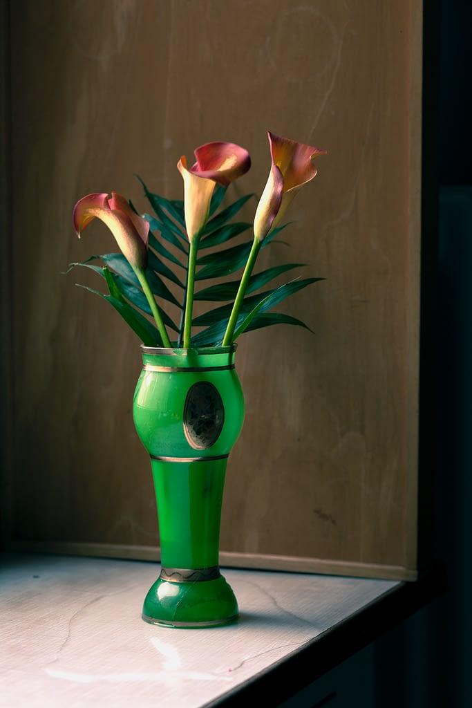 Green Vase and Lilies II, Berlin 2020, Copyright :Sean P. Durham